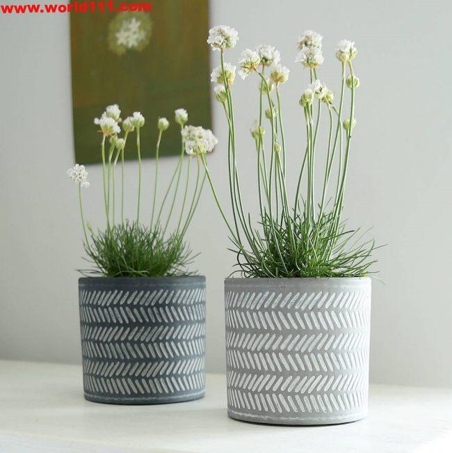 صور أفضل أواني الزهور الداخلية المزخرفة لمنزلك